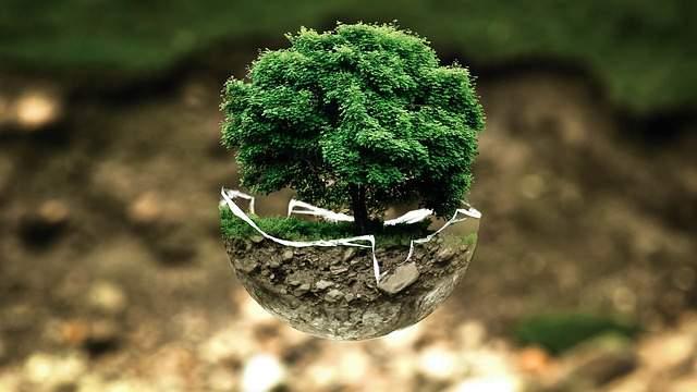 Ekologia na co dzień