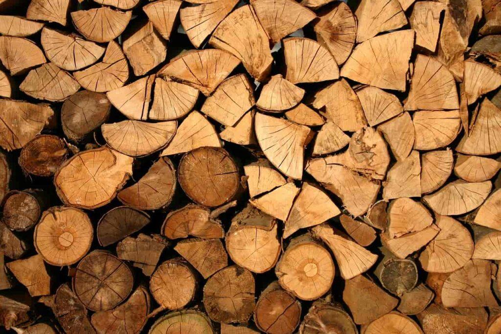 Kary za samowolną wycinkę drzew